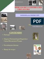 Patología de La Construcción