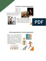 161171273-Escuela-Biotipologica-Francesa.docx