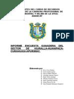 Informe de Ganaderia de Kiuñalla - Huanipaca