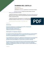 Sindrome de Ahumada Del Castillo