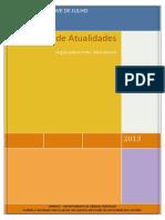 Caderno de Atualidades 2013 Atualizado