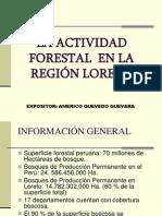 Presentación1 exportaciones forestales