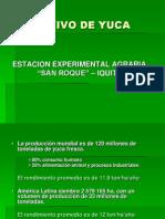 Presentación Yuca