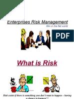 Enterprise Risk Mangement