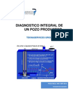 Analisis Integral de Un Pozo (Resumen-sep2014)