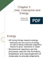 Pengantar enzim