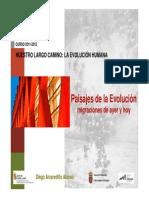 Paisajes de la Evolución