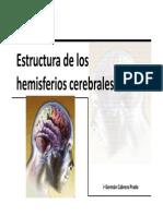 Generalidades de Los Hemisferios Cerebrales.