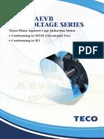 Catalogue AEEB_Teco Motor
