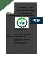 Informe de Práctica Nº 03 d La Manada
