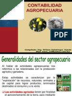 wilsonvelasteguicontabilidadagropecuaria-130508121032-phpapp01
