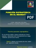 Puncion suprapubica-REDVENEO
