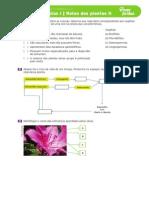 reinodasplantas.pdf