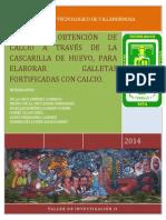 GALLETA FORTIFICADA-PROYECTO FINAL TALLER 1.docx