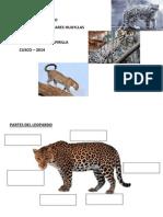 Librillo El Leopardo