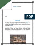informe biocel