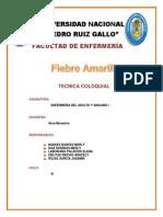 FIEBRE AMARILLA FINAL.docx
