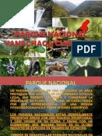 Parque Nacional Yanachaga Chemillen