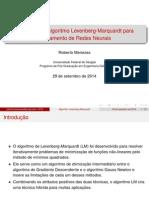 Algoritmo Levenberg-Marquardt (Implementação)