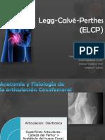 Legg Calvé Perthes (ELCP)