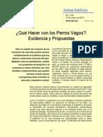 Qué Hacer con los Perros Vagos.pdf