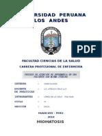 Universidad Peruana Los Andes Mioma Uterino
