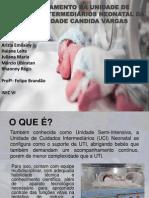 Apresentação Isec Vi -2014.1 - Felipe