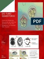 Embriologia Del Tubo Digestorio3