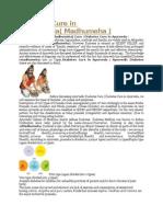Diabetes Cure in Ayurveda.doc