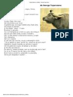 Fabule _ Bivolul si cotofana - George Toparceanu.pdf