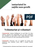 Voluntariatul În Organizaţiile Non-profit