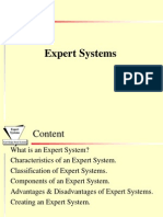 901470_exp_system1.ppt