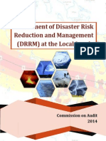 Assessment of DRRM at the Local Level