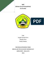 SAP Ca servik.doc