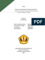Buah Naga Spbo (1)