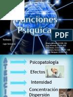 Funciones Psiquicas (Psicologia Evolutiva I)