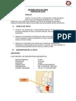 Informe Visita de Obra Puente Ilave