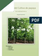 Fertilidad Papaya Analisis