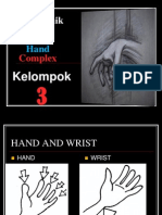 Wrist Joint  Hand and Fingers