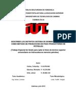 DESCRIBIR LOS DISTINTOS SISTEMA DE BOMBEO HIDRÁULICO COMO MÉTODO DE PRODUCCIÓN EN POZO PRODUCTORES DE PETRÓLEO