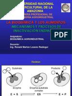 16-Mecanismo de Accion e Inhibición de La Actividad Enzimática