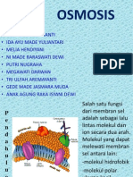 Ppt Osmosis