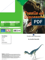 Fossils and Dinosaurs
