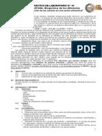 Determinación de Las Calorías en Una Ración Alimenticia-04