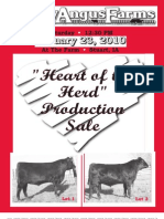 Varley Angus Farms | Heart of the Herd Production Sale