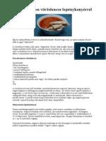 Indiai vöröslencsés receptek