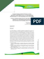 Articulo. Caracterizaación Fungica Aerea