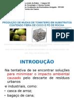 PRODUÇÃO DE MUDAS DE TOMATEIRO EM SUBSTRATOS CONTENDO