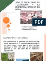 Principales Problemas de La Ganaderia y La Agroindustria