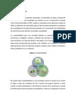 Desarrollo Sustentable, Economico y Social